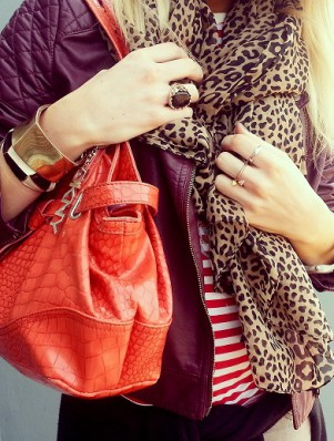 Fashionjazz_leopard_redstripes 2